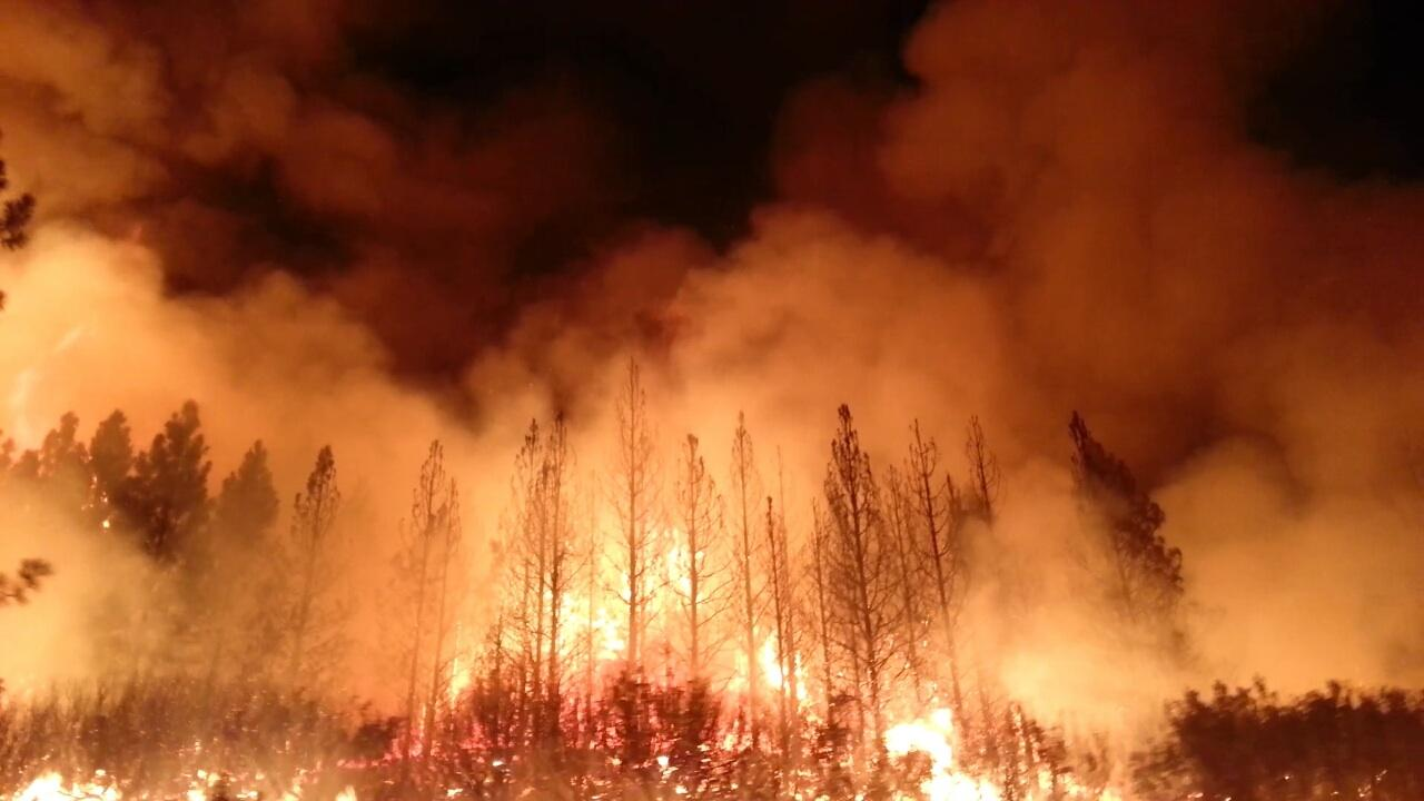 What Everyone Missed About the California Forest Fires – Climate Change Affects Us All